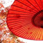 【ニッポン視察団】日本のご当地お土産ベスト25のランキング結果について【外国人が選んだ】