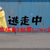 逃走中ワンチームvs新型ハンターのロケ地場所は!?結果についても紹介!